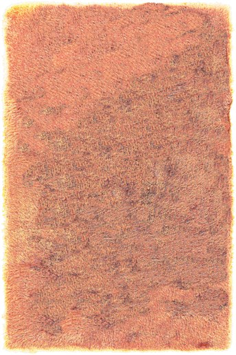 Surya Monster MNS-1006 Rugs | Rugs Direct