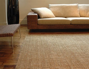 Anji mountain jute collection andes rugs rugs direct for Moquette en coco